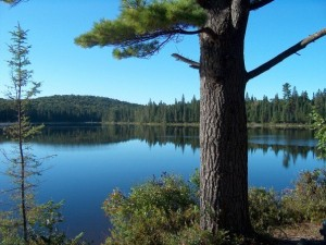 The view from one of two campsites at Sittingman Lake in Algonquin Park